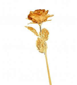 Golden Plated Rose