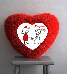 Propose with red heart cushion